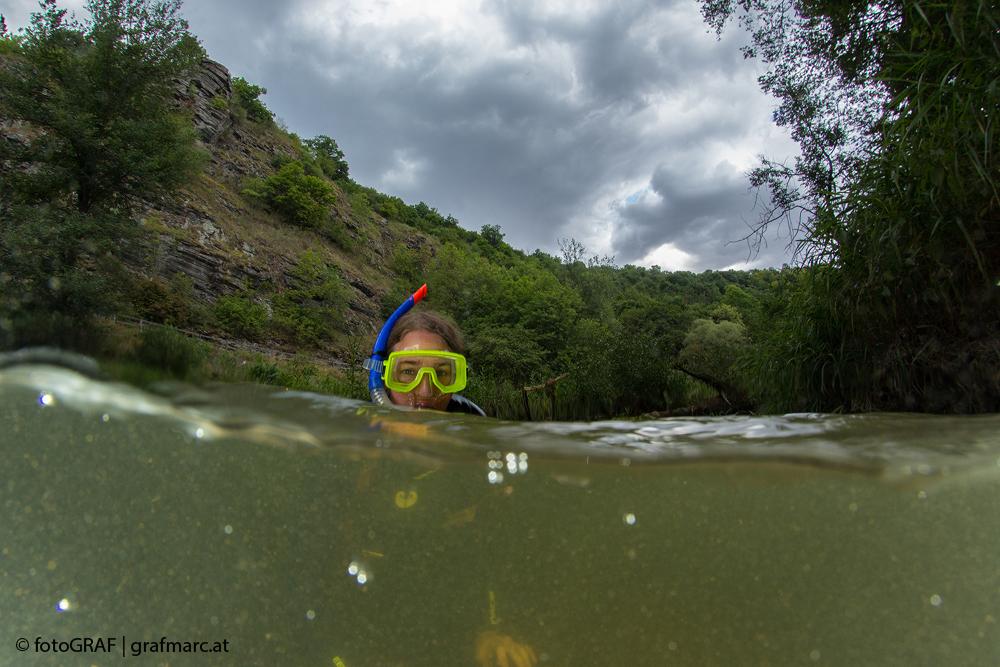 Unsere Naturreporter scheuen keine Mühen und tauchen auch mal ins kalte Wasser der Thaya ab.
