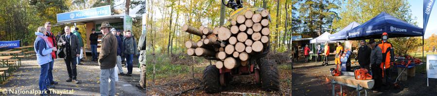 Forstleute wollen mehr über die Waldverjüngung im Nationalpark Thayatal wissen