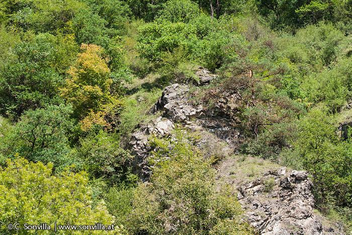 Im Thayatal tritt die geologische Geschichte vielerorts offen zutage.