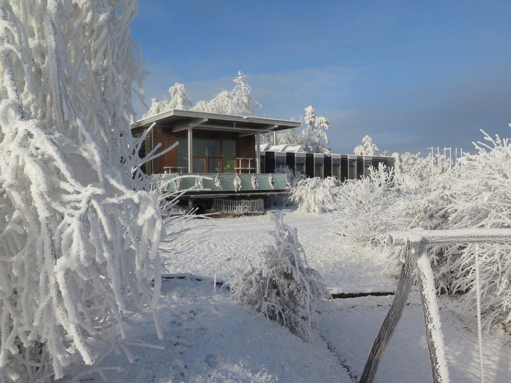 Nationalpark Thayatal im Winter