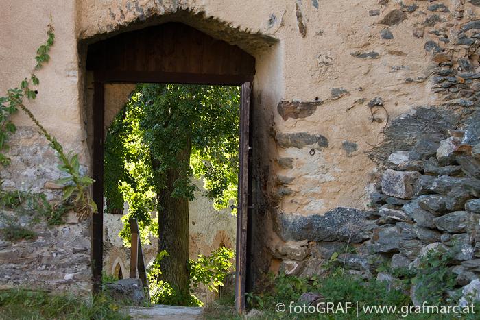 Im Burghof der Burgruine Kaja steht die alte Linde. Ein ideales Plätzchen für eine kühle Rast im Sommer.