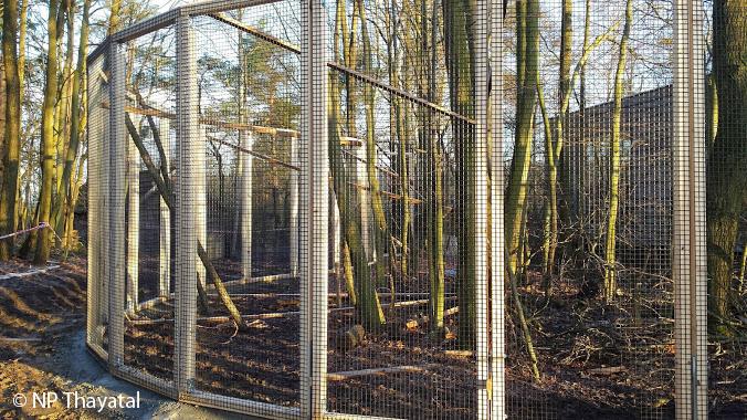 Das Wildkatzengehege im NP Thayatal ist jetzt um ein gutes Stück Wald größer geworden.